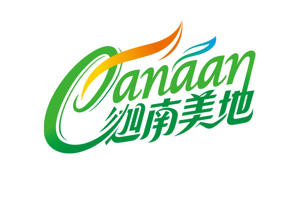 迦南美地 漢方養身 茶 品牌設計